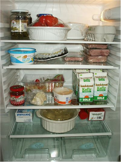 Picture Of Inside Refrigerator